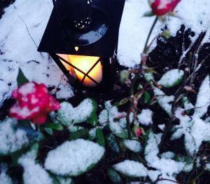 Toiveikasta talvimieltä!