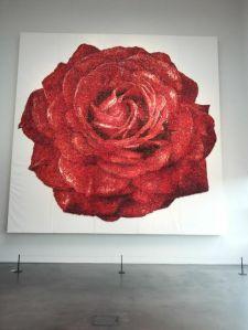 """Ruusu. Enkä voi olla siteeraamatta runoa: """"Ruusu on ruusu on ruusu"""""""