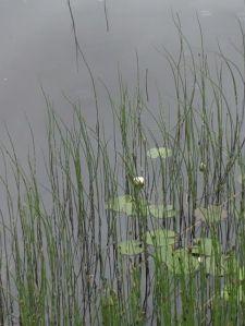 Romaanissa liikutaan syvissä ja vaähän matalammissakin vesissä.