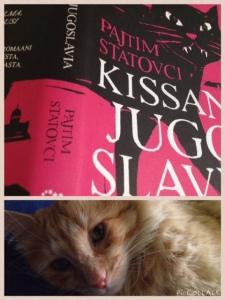 Mustavalkoisia kissoja on Suomessa, oranssinvaaleita Kosovossa. Tai voi olla.