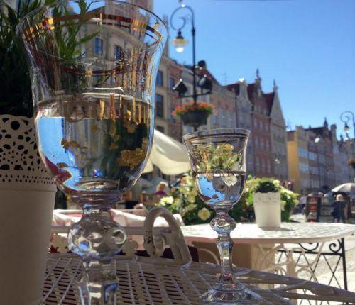 Näissä näkymissä kirjaa lukemassa, lasissa lukutunnelmaan sopivasti gdanskilainen erikoisuus: vodkapohjainen likööri lehtikultahippuineen.