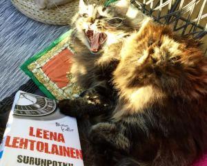 Lehtolaisen luomat henkilöt ovat monesti kissaihmisiä. Näin hurjaa menoa ei kyllä kirjoissa ole.