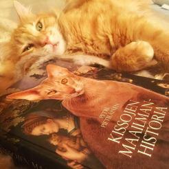 kissojen-maailmahistoria2