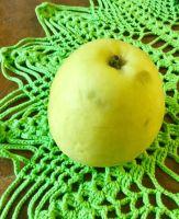 Omenapuu2